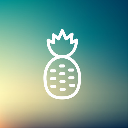 minimalistic: Pineapple icon thin line for web and mobile, modern minimalistic flat design.