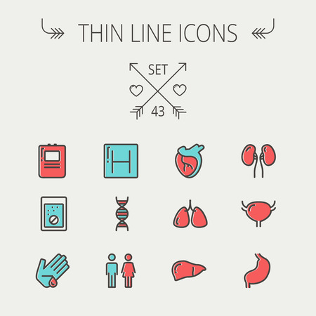 Medicine thin line icon set for web and mobile. Set include-human internal organs, hospital, DNA icons. Modern minimalistic flat design. Vector icon with dark grey outline and offset colour on light grey background.