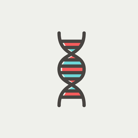 genomes: DNA icon thin line for web and mobile, modern minimalistic flat design. Vector icon with dark grey outline and offset colour on light grey background.