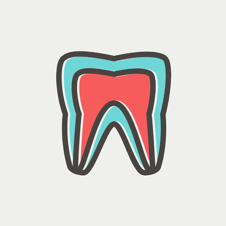 molar: Molar tooth icon thin line for web and mobile, modern minimalistic flat design. Vector icon with dark grey outline and offset colour on light grey background.