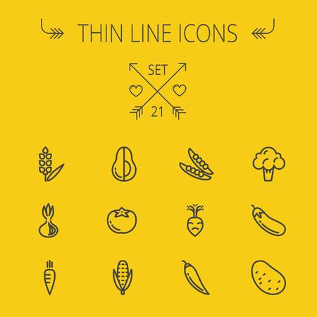 음식 및 음료 얇은 라인 아이콘 웹 및 모바일에 대 한 설정. 설정 - 콜리 플라워, 당근, 감자, 옥수수, 가지, 토마토, 양파, 아보카도 아이콘을 포함합니