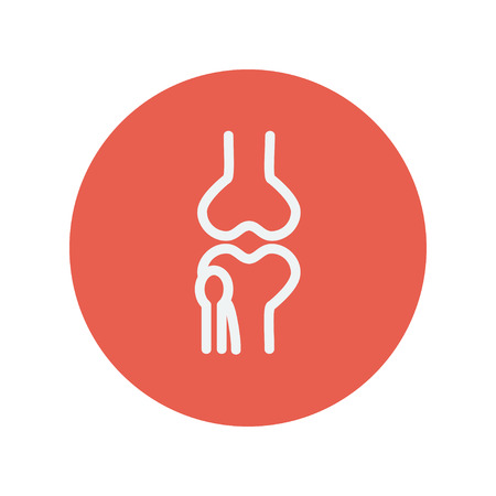 Knee joint thin line icon for web and mobile minimalistic flat design. Vector white icon inside the red circle