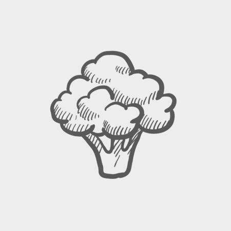 Brocolli sketch icon for web and mobile. Hand drawn vector dark grey icon on light grey background.