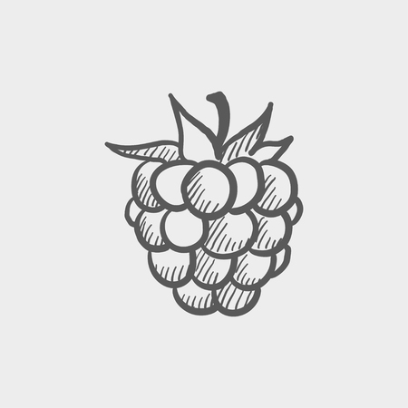 Lanzones sketch icon for web and mobile. Hand drawn vector dark grey icon on light grey background. 向量圖像
