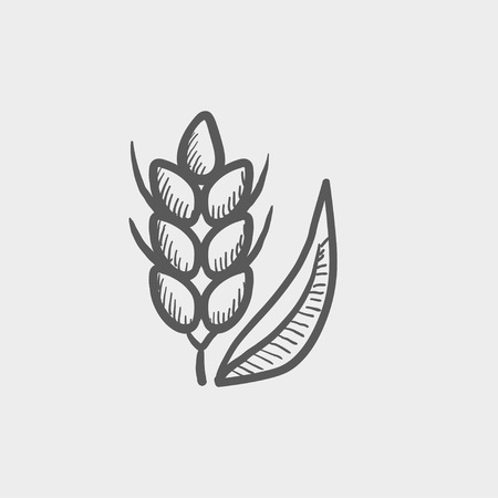Beans sketch icon for web and mobile. Hand drawn vector dark grey icon on light grey background. Иллюстрация