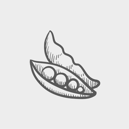 Chinese celery sketch icon for web and mobile. Hand drawn vector dark grey icon on light grey background. Ilustração