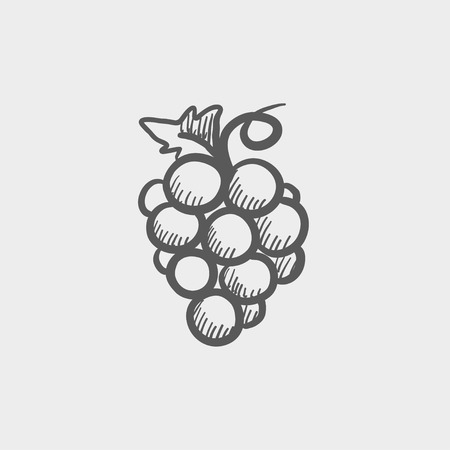 Bunch of grapes sketch icon for web and mobile. Hand drawn vector dark grey icon on light grey background.