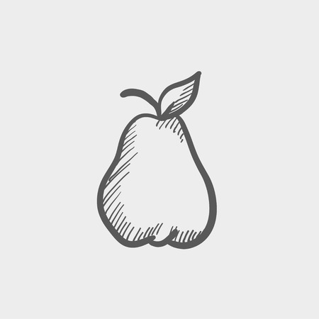 photorealistic: Pear sketch icon for web and mobile. Hand drawn vector dark grey icon on light grey background.