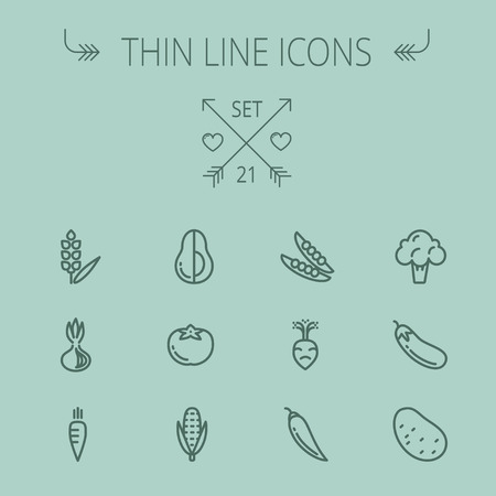Food and drink thin line icon set for web and mobile. Set includes- cauliflower, carrots, potato,corn, eggplant, tomato, onion, avocado icons. Modern minimalistic flat design. Vector dark grey icon on grey background.