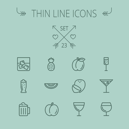 Food and drink thin line icon set for web and mobile. Set includes- pineapple, orange, wine, glass of water with ice, tequilla, beer, melon icons. Modern minimalistic flat design. Vector dark grey icon on grey background.