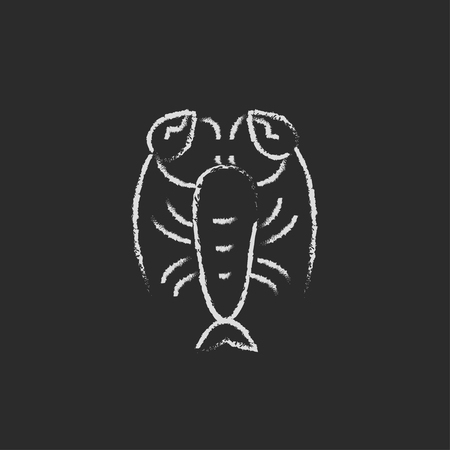 Lobster hand drawn in chalk on a blackboard vector white icon isolated on a black background. Stock fotó - 45320631
