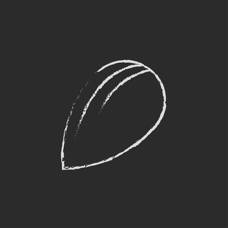 draw a sketch: Almond hand drawn in chalk on a blackboard vector white icon isolated on a black background.