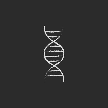 DNA hand drawn in chalk on a blackboard vector white icon isolated on a black background.
