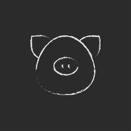 pigling: Pig head hand drawn in chalk on a blackboard vector white icon isolated on a black background.