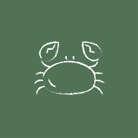 green crab: Crab hand drawn in chalk on a blackboard vector white icon isolated on a green background.