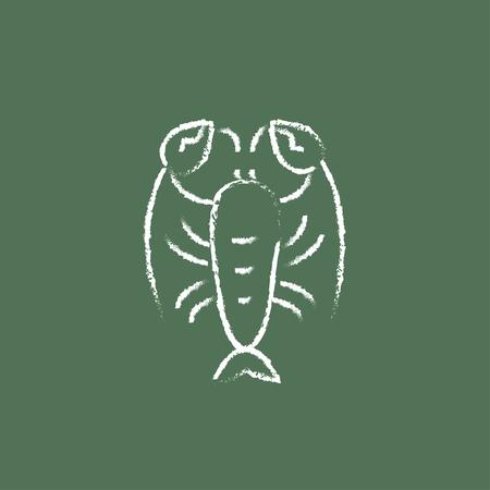 Lobster disegnata a mano in gesso su una icona del bianco vettore lavagna isolato su uno sfondo verde. Archivio Fotografico - 45681854