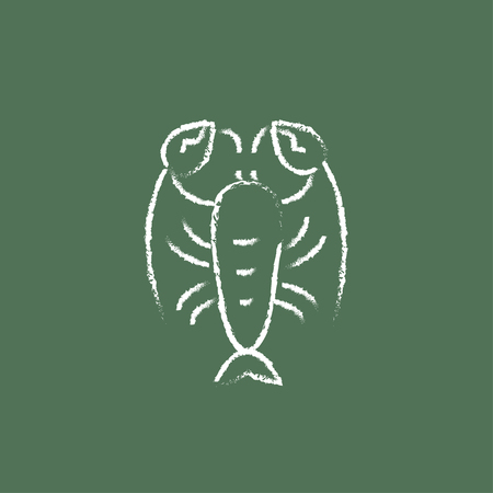 Lobster hand drawn in chalk on a blackboard vector white icon isolated on a green background.