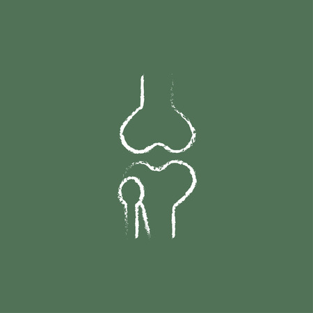 bursa: Knee joint hand drawn in chalk on a blackboard vector white icon isolated on a green background. Illustration