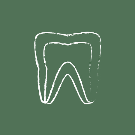 molar: Molar tooth hand drawn in chalk on a blackboard vector white icon isolated on a green background. Illustration