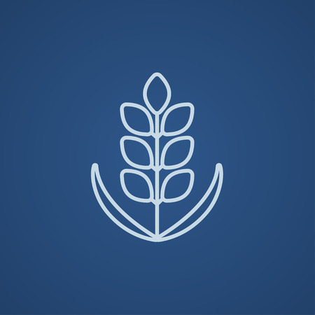 Wheat line icon for web, mobile and infographics. Vector light blue icon isolated on blue background.