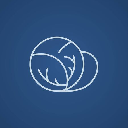 Cabbage line icon for web, mobile and infographics. Vector light blue icon isolated on blue background.