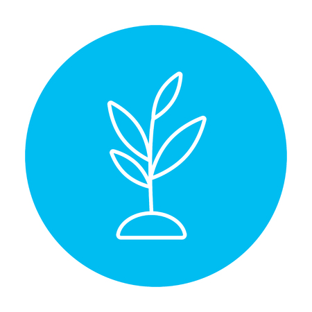 fertile: Sprout line icon for web, mobile and infographics. Vector white icon on the light blue circle isolated on white background.