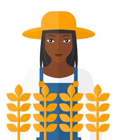 peasant woman: An african-american farmer standing in a wheat field vector flat design illustration isolated on white background.