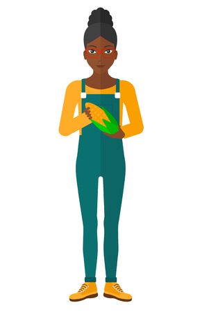 agriculturist: An african-american agriculturist holding a corn cob vector flat design illustration isolated on white background.