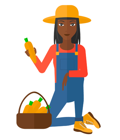 haulm: An african-american farmer collecting carrots in basket vector flat design illustration isolated on white background.
