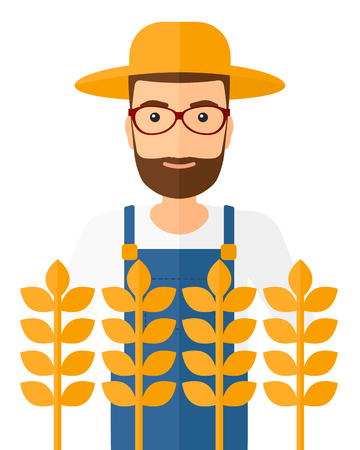 A hipster farmer with the beard standing in a wheat field vector flat design illustration isolated on white background.