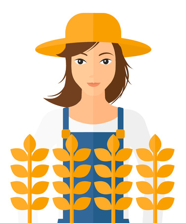 plant stand: A farmer standing in a wheat field vector flat design illustration isolated on white background.