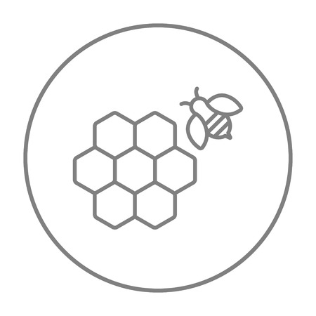 Honeycomb and a bee line icon for web, mobile and infographics. Vector grey thin line icon in the circle isolated on white background.