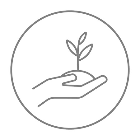 seedlings: Hands holding seedling in soil line icon for web, mobile and infographics. Vector grey thin line icon in the circle isolated on white background. Illustration