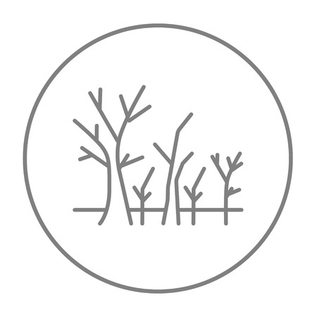 nude outdoors: Tree with bare branches line icon for web, mobile and infographics. Vector grey thin line icon in the circle isolated on white background.