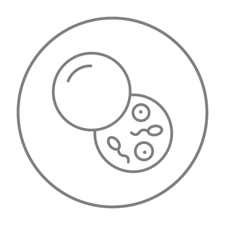espermatozoides: icono de la línea donante de esperma para web, móvil y la infografía. gris del vector icono de línea fina en el círculo aislado en el fondo blanco. Vectores