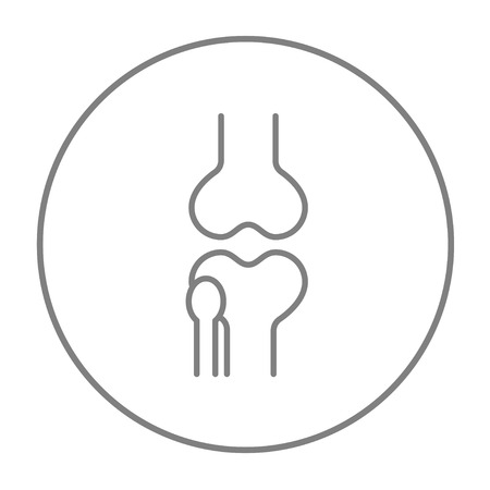 bursa: Knee joint line icon for web, mobile and infographics. Vector grey thin line icon in the circle isolated on white background.