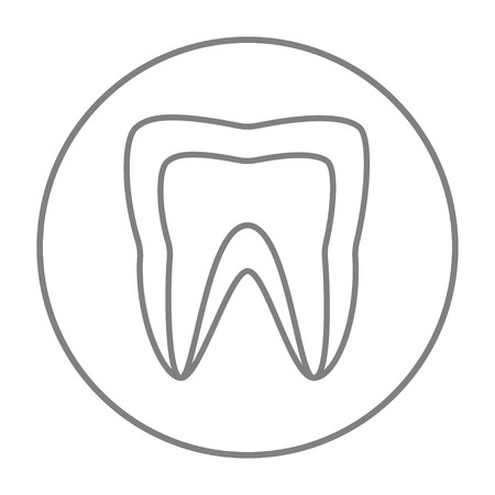 molar: Molar tooth line icon for web, mobile and infographics. Vector grey thin line icon in the circle isolated on white background. Illustration