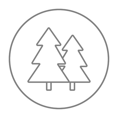 Pine trees line icon for web, mobile and infographics. Vector grey thin line icon in the circle isolated on white background. 向量圖像