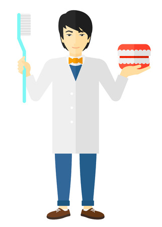 An asian dentist with a dental jaw model and a toothbrush vector flat design illustration isolated on white background. Illustration