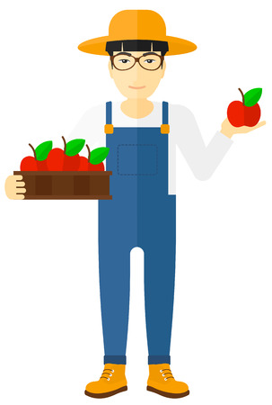 asian farmer: An asian farmer holding a box with apples in one hand and an apple in another vector flat design illustration isolated on white background.