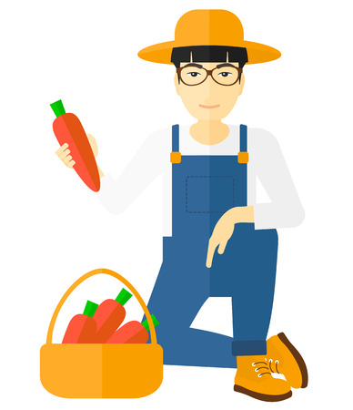 An asian farmer collecting carrots in basket vector flat design illustration isolated on white background.