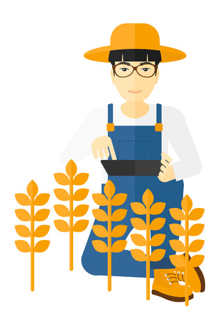asian farmer: An asian farmer checking plants on a field and working on a digital tablet vector flat design illustration isolated on white background.
