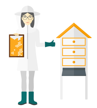 protective: An asian beekeeper in protective suit working at apiary holding a framework in hand and showing thumb up vector flat design illustration isolated on white background.