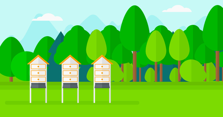keeping: Background of beehives in meadow vector flat design illustration. Horizontal layout.