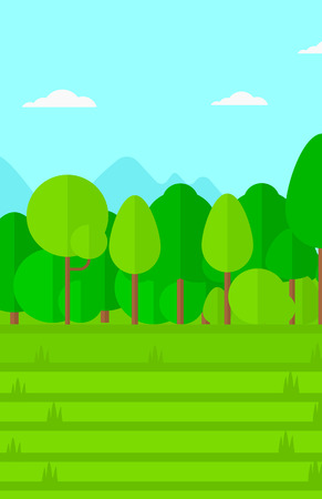 lea: Background of green lawn with trees vector flat design illustration. Vertical layout.