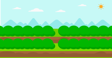 plowed: Background of field rows with green bushes vector flat design illustration. Horizontal layout.