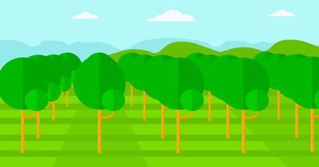 albero da frutto: Sfondo di giardino con alberi da frutta vettore piatta design illustrazione. layout orizzontale.