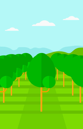 range fruit: Background of garden with fruit trees vector flat design illustration. Vertical layout. Illustration