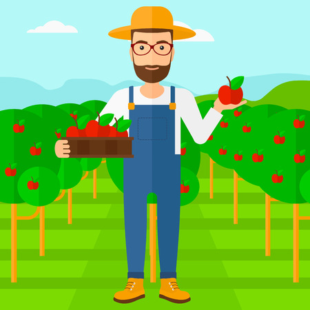 gather: A hipster man with the beard holding a box with apples in one hand and an apple in another on a background of garden with trees vector flat design illustration. Square layout.