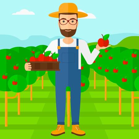 albero da frutto: Un uomo pantaloni a vita bassa con la barba in mano una scatola con le mele in una mano e una mela in un altro su uno sfondo di giardino con alberi vettore piatta design illustrazione. pianta quadrata.